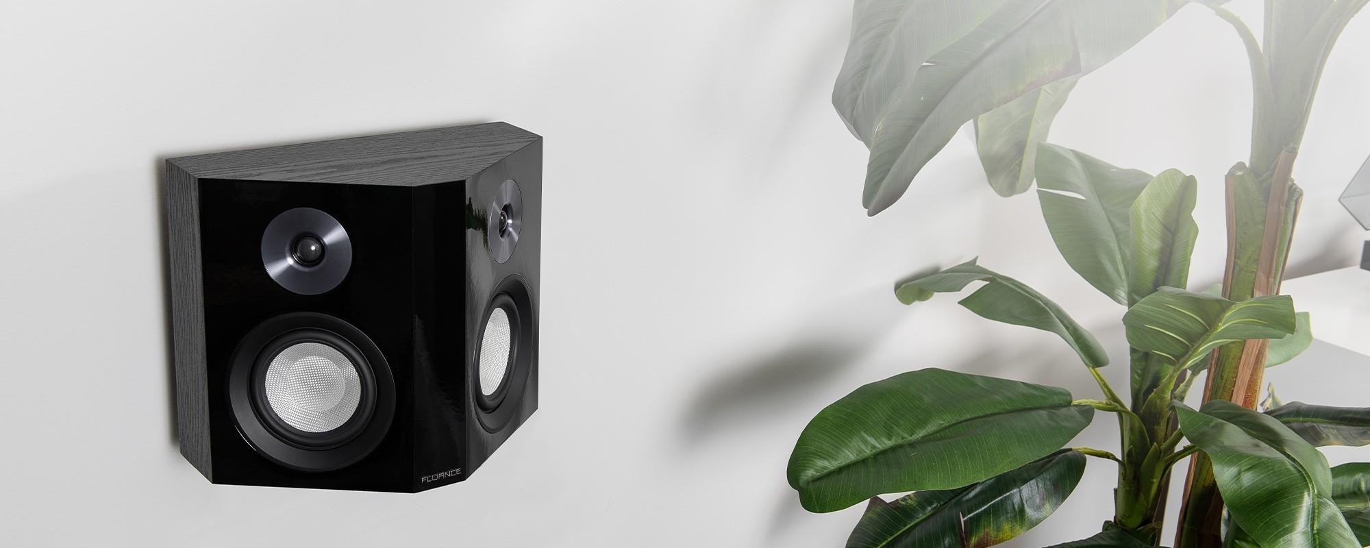 XLBP Bipolar Surround Sound Speaker with plant