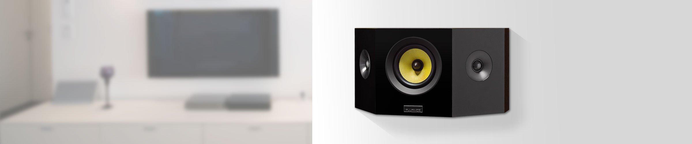 Signature Series Bipolar speakers- intro