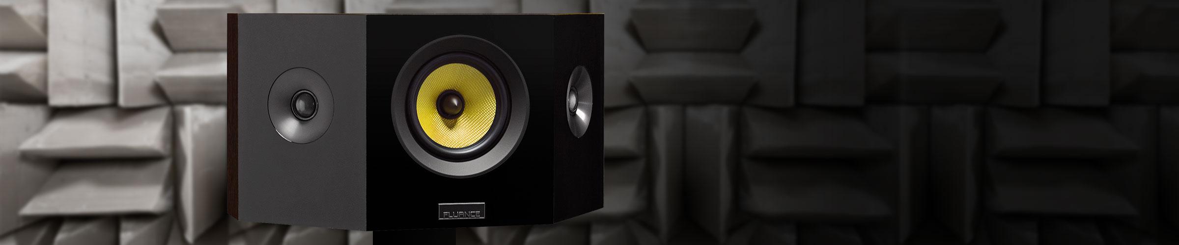 Signature Series Bipolar speakers- midrange